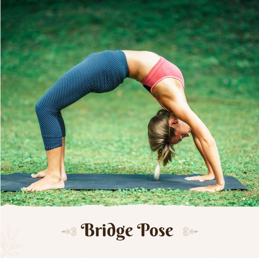 bridge pose yoga to get taller