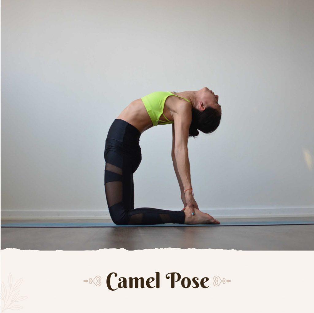 Camel Pose to balance pitta dosha
