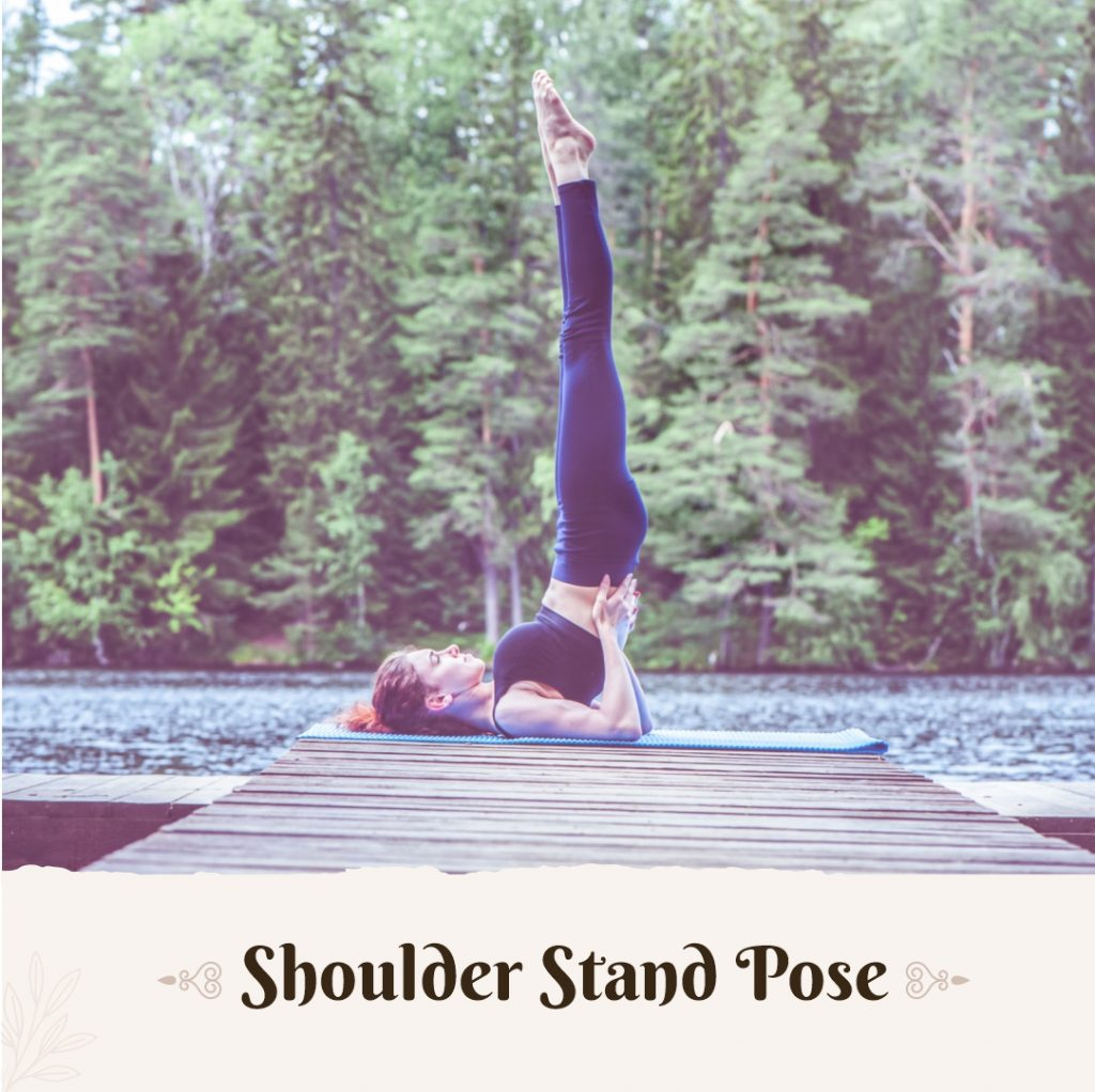 shoulder stand yoga for height