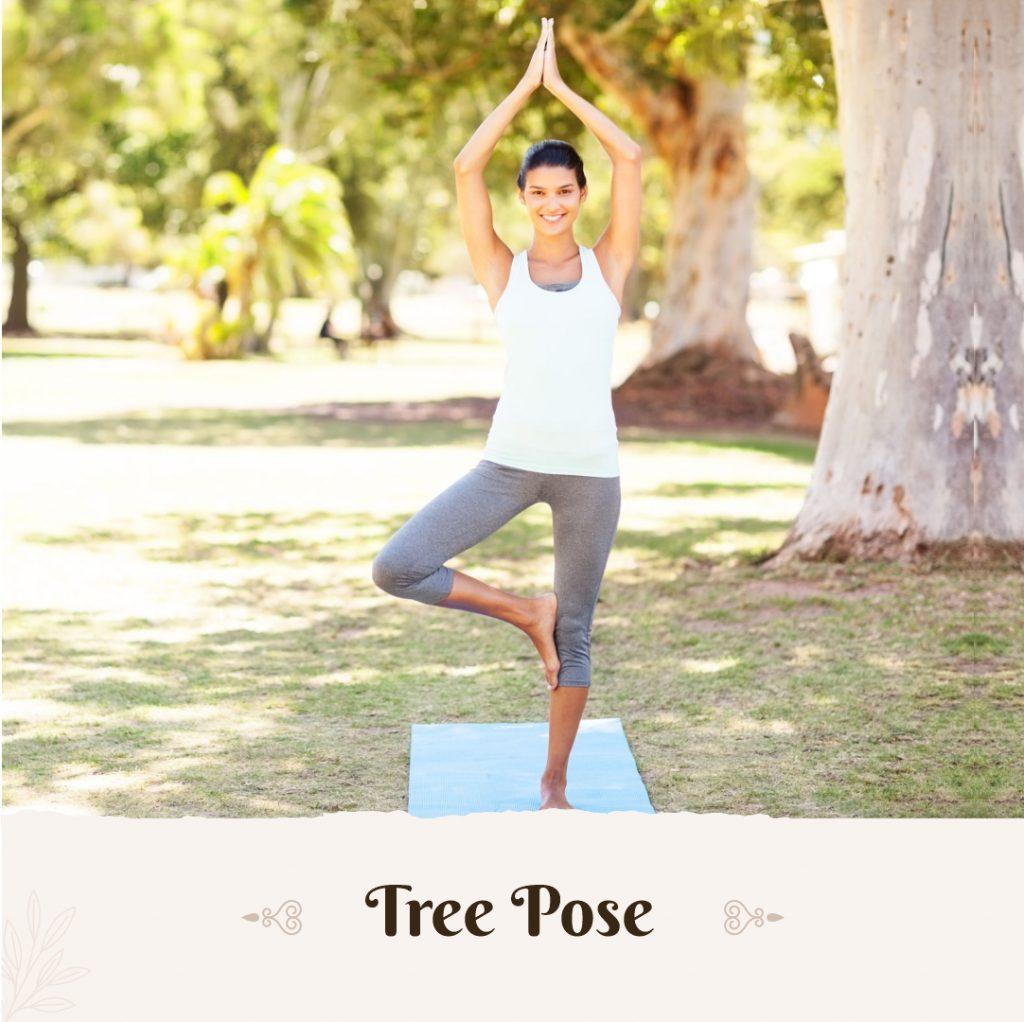 tree pose yoga to increase height