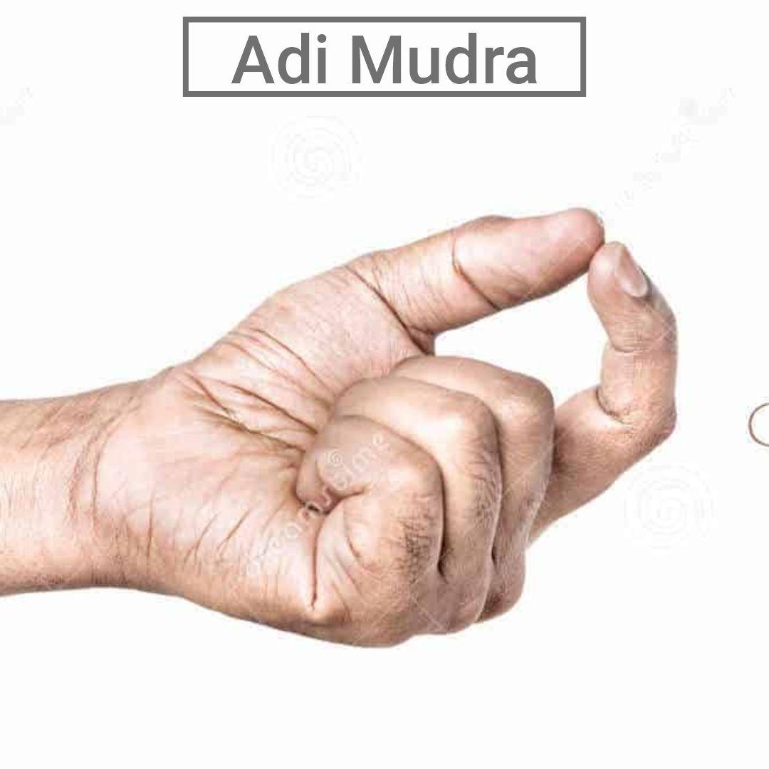 Adi Mudra